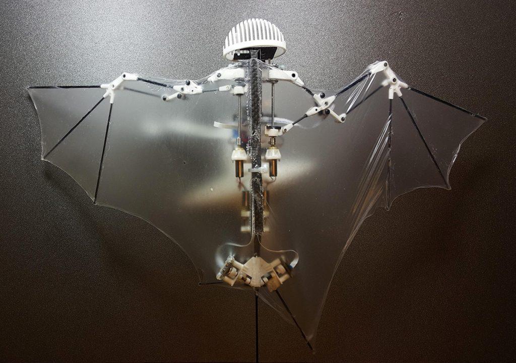 ربات خفاشی