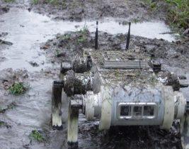 RHex-in-mud